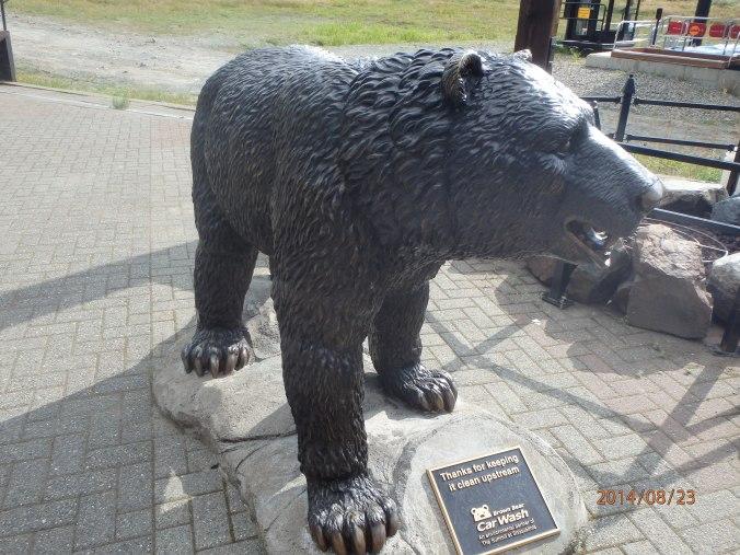 A safe Bear